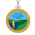 logo Distretto del Commercio